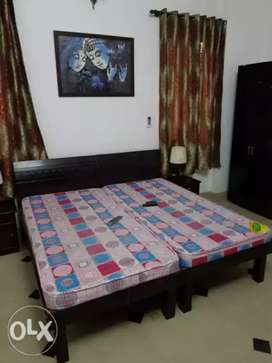 Vaishali Studio Furnished Room With Food Independent Room n Handloom