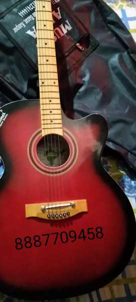 Guitar for sell hobner Indian guitar only 8 month old
