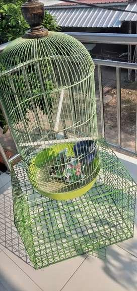 Kandang burung serba guna 2pcs Rp.250.000