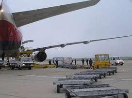 Airport ground staff direct joining job in kolkata & Delhi Airport