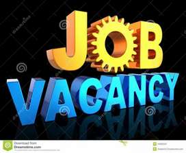 required to BPO job for female&male candidate fresher and experience .