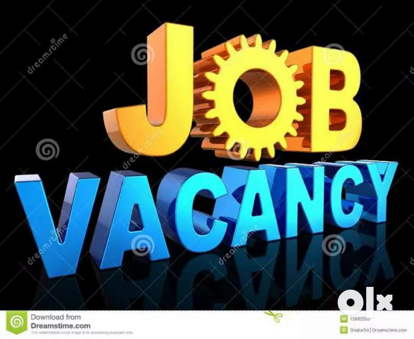 required to BPO job for female candidate fresher and experience . 0