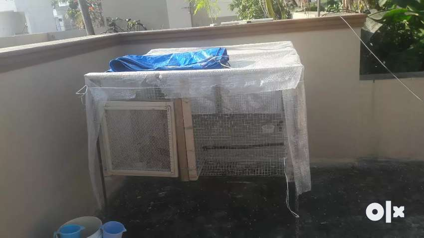4×4 cage for sale it has a door 1×1 .