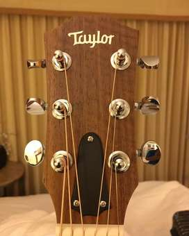 TAYLOR GS Mini e-koa..