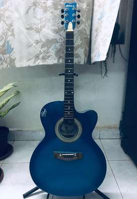 Hobmer Semi Acoustic Guitar