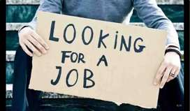 i am looking for job Assistant Accountant/Data Entry Operator/Computer