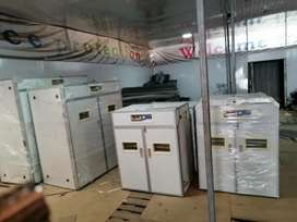 Incubators for chicken egg hatchry