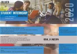 Internship-Business Sales