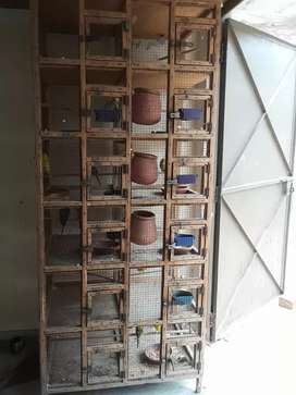 11 portion wooden cage