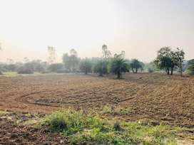 FARM LAND AVAILABLE IN AUROVILLE CITY