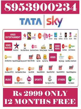 TATA SKY 1 YEAR PACK LOWEST PRICES ALL INDIA-TATASKY AIRTEL DISH D2H