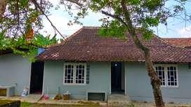 Disewakan Rumah Asri Halaman Super Luas di Trirenggo Bantul