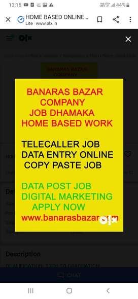 Data entry  ,telcaller