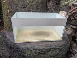 Aquarium buc hari ini
