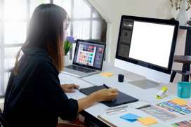 I Want World Professional  Designer