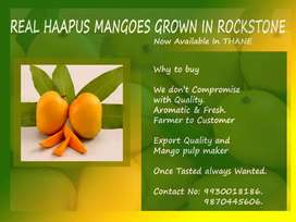 Mangoes for sell