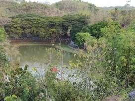 Tanah View Telaga Di Semanu Gunungkidul Dijual Murah