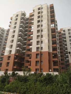 Cheap price 4bhk flat available for sale in bahadurgarh