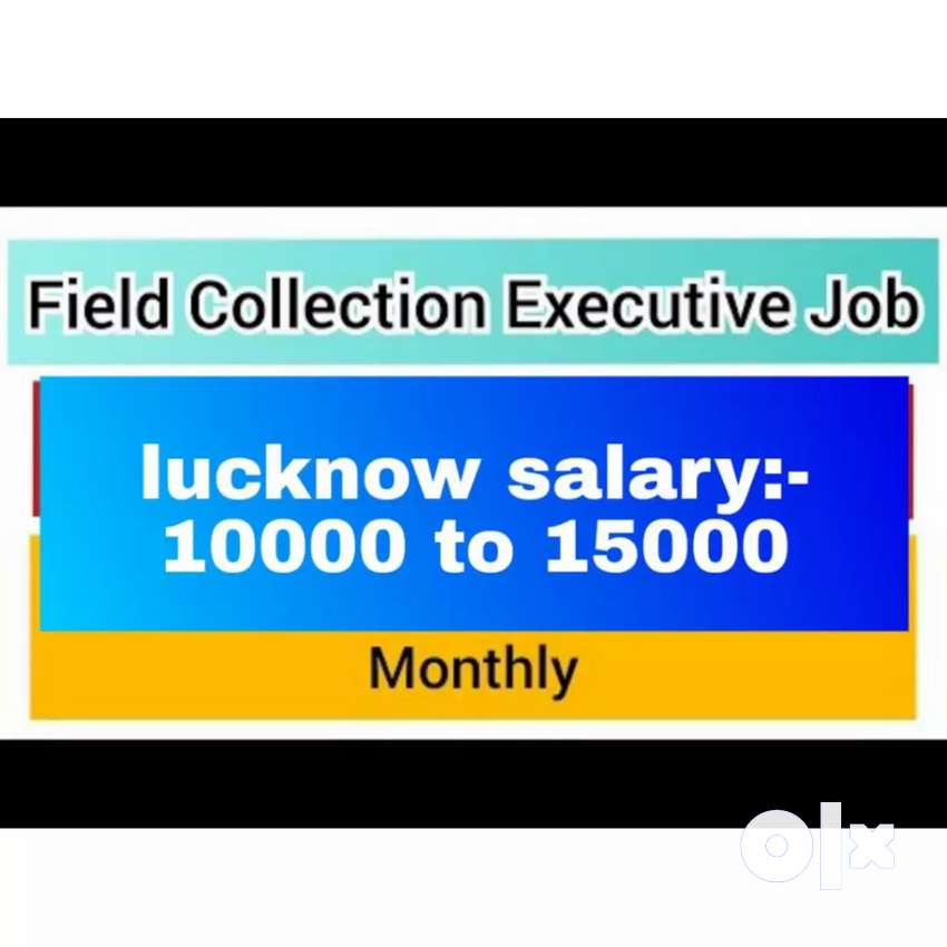 Hiring for collection executive field work fixed salary no target 0