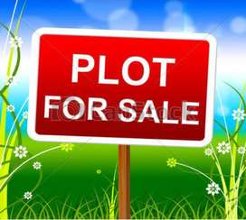 ADATT, 4.5 cent plot, an old house, Asking price 25 Lakh Negotiable,