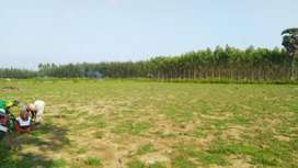 6acre Agricultural land long lease 2 bore 1bhk