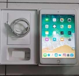iPad mini 5 iBox