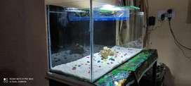 New 3 ft Aquarium