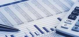 GST , Income Tax Return, TDS Return , statutory payment etc