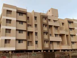 1 Bhk Ready Passion Flat Sale In Loni Kalbhor