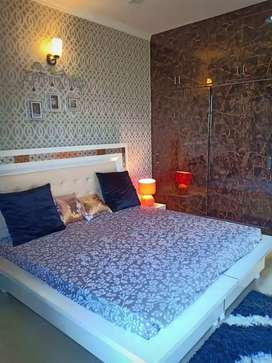 luxurious 2 bhk flat fully furnished flat in Mohali