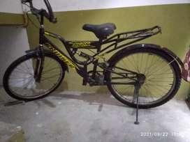 Bicycle Avon Cruiser