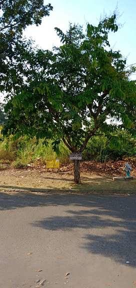Dijual Tanah Siap Bangun di Perumahan Puri Surya  Gedangan Sidoarjo