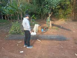 Kavling Murah Samping Kebun Buah Bisa Diabnagun Rumah Mewah
