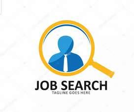 Urgent requirement for computer operator