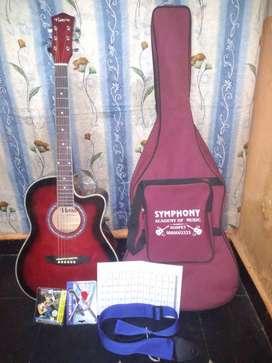 Havana Guitar New