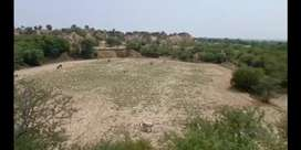 27 kanal agriculture land available near laifwal chakwal