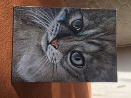 Cat acrylic painting on canvas