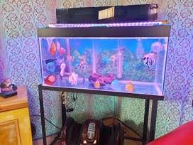 Aquarium 90x40x45