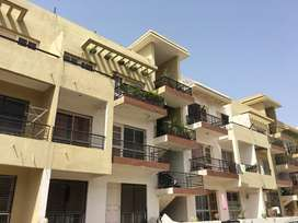 Spacious 3bhk ready to move with roof rights flat