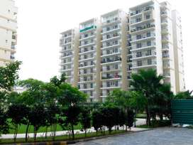 3 BHK Ready To Move Flats in Gated Society Zirakpur Near Airport