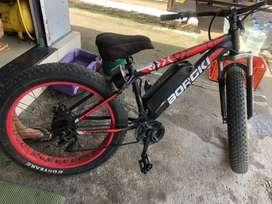 Fat E bike