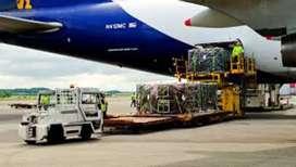 Urgent Requirement Of Cargo Staff At Pune Airport