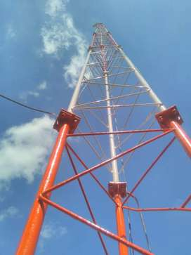Site Audit/Tower Painting and earthing