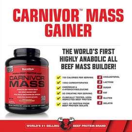 Susu gainer Carnivor Mass 5,9lbs
