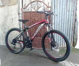 "Sepeda MTB ELEGANCE  Ring 26"""