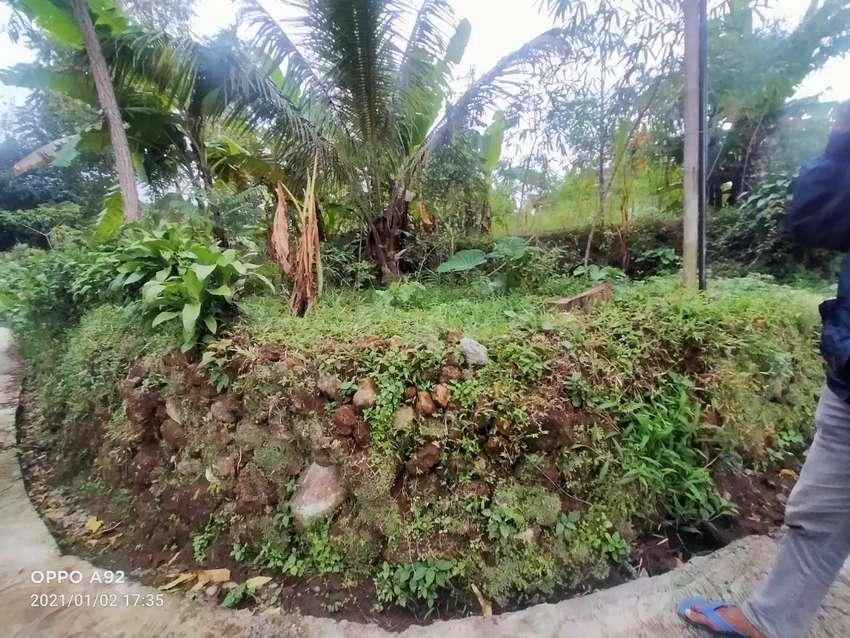 Tanah ngargoyoso Karanganyar dekat wisata kemuning
