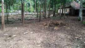 Near to school, two sides road, temple, chruch, good plot for resident