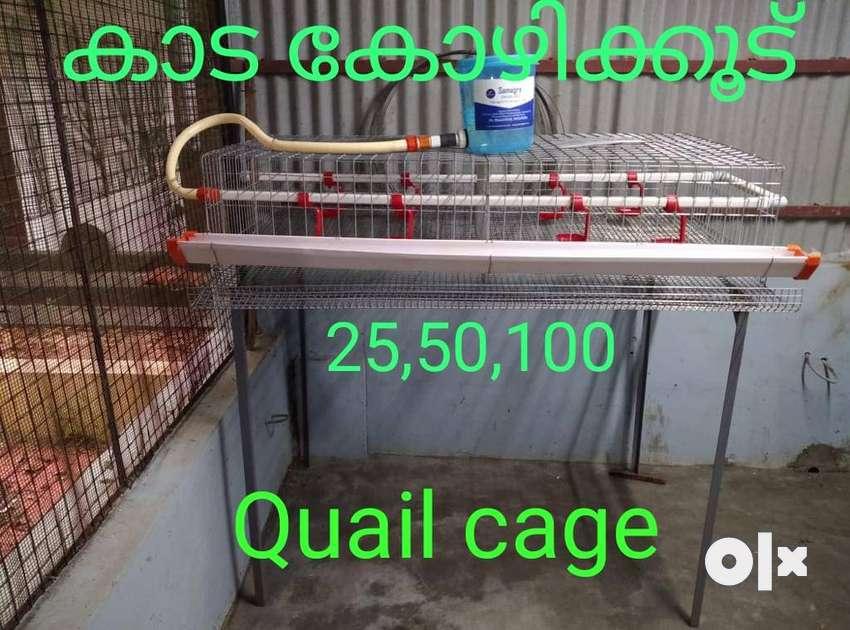 cage / Kaada cage 0