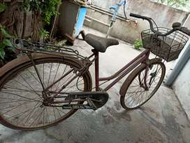 Lady Bird cycle used for only 4 years... Karapa