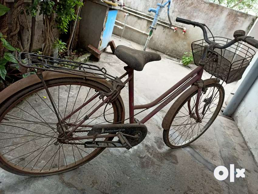 Lady Bird cycle used for only 4 years... Karapa 0